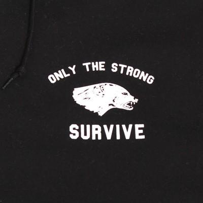 strong surviv detail